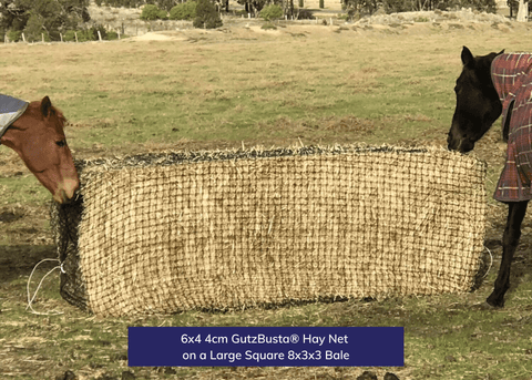 6x4 GutzBusta 4cm Hay net on a Large Square 8x3x3 Bale