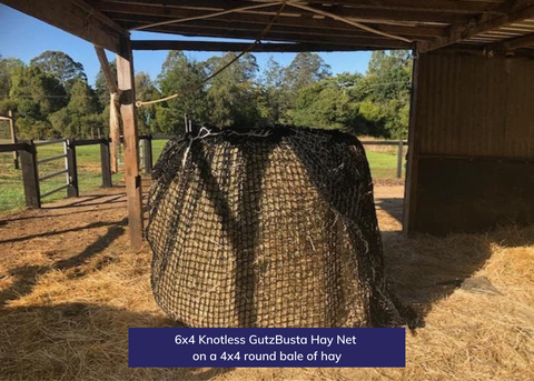6x4 Knotless GutzBusta Hay Net on a 4x4 round bale of hay