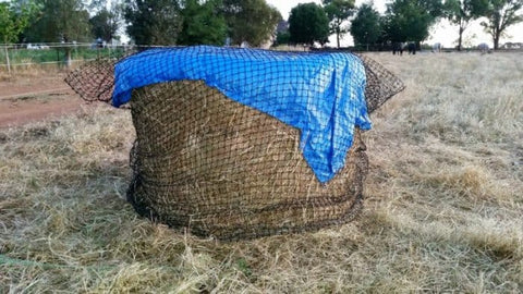 GutzBusta® Slow Feed Hay Net with blue tarp on top
