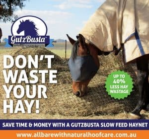 Save time and money with Gutzbusta slow feed hay nets