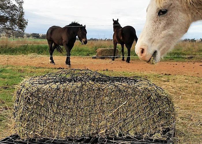 GutzBusta® Knotted Hay Nets - Large-01
