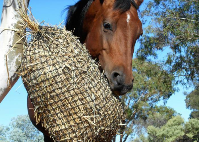 GutzBusta® Knotted Hay Nets - Small