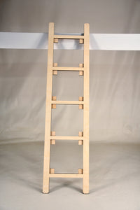 Leaning Ladder Interchangeable Full Size Floor Standing Hocus Pocus Home decor UNFINISHED blank Kit