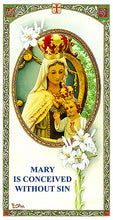 Load image into Gallery viewer, SAFEGUARD IMAGE OF MARY IMMACULATE FOR YOUR HOME & PLACE OF BUSINESS