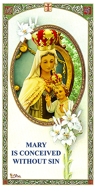 SAFEGUARD IMAGE OF MARY IMMACULATE FOR YOUR HOME & PLACE OF BUSINESS