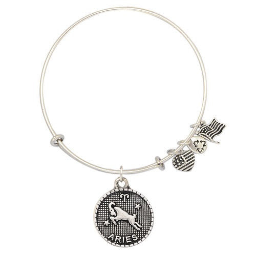 Aries Charm Medallion & Adjustable DIY Charm Bracelet
