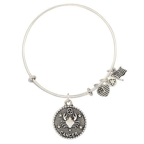 Cancer Charm Medallion & Adjustable DIY Charm Bracelet