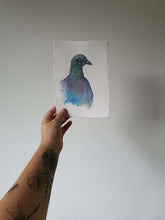 Load image into Gallery viewer, Celtic bird: pigeon a5