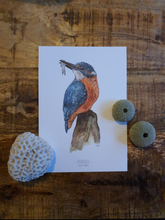 Load image into Gallery viewer, Limited Edition kingfisher