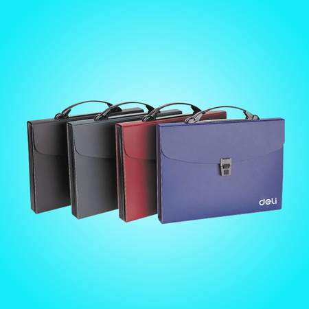 Business file bags