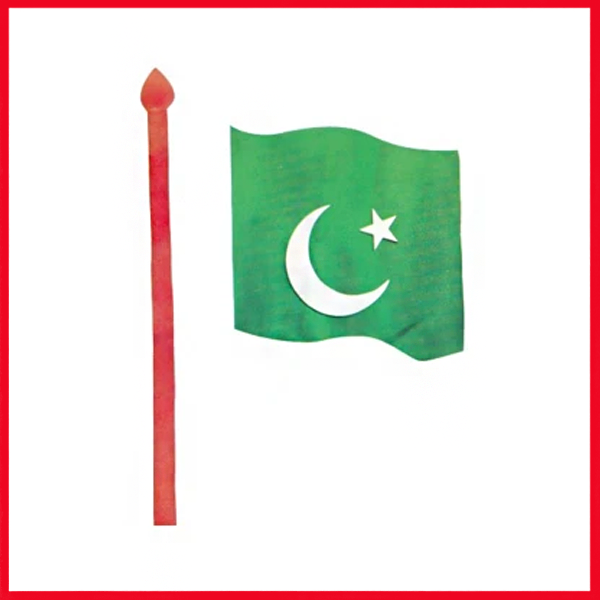 Pakistan Flag Foaming Sheet
