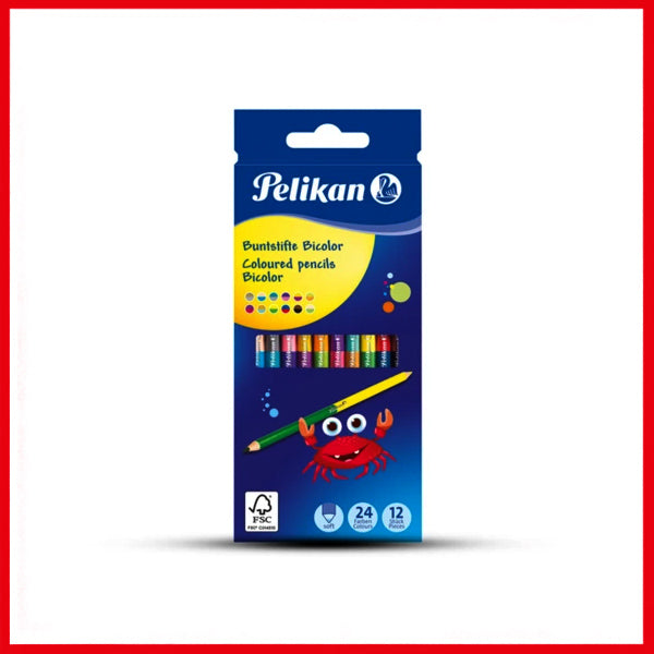Pelikan 12 Color Pencil set Thick Triangular BSD12DN