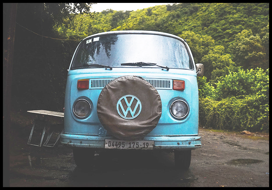 VW in jungle