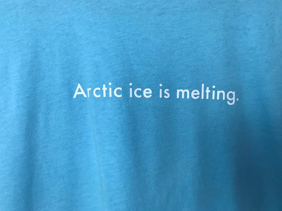 arctic ice is melting t-shirt L