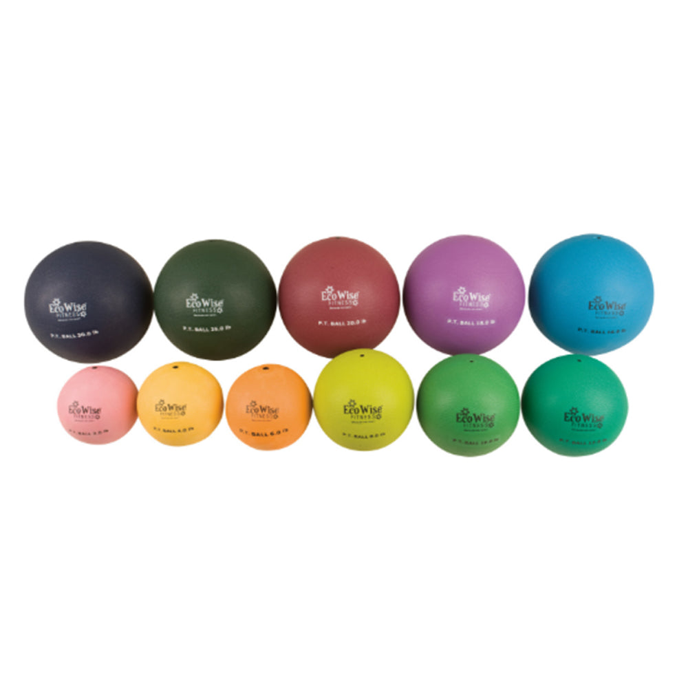 EcoWise Non-Bouncing Physical Therapy Ball (Sale)