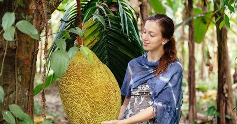 Woman admiring a large jack fruit growing on the tree