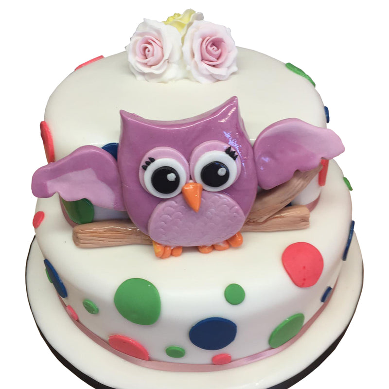 Olive the Owl Birthday Cake