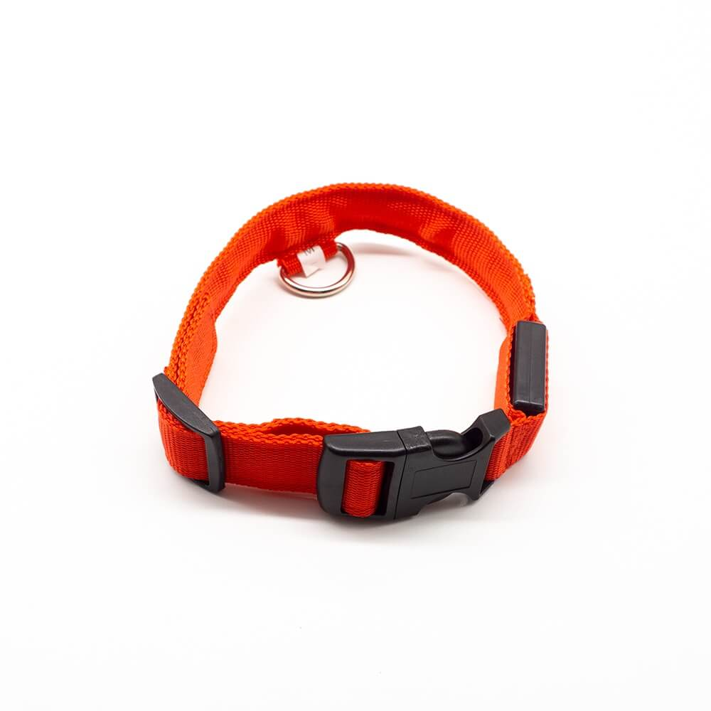 Blazin' Safety LED Dog Collar – USB Rechargeable with Flashing Light