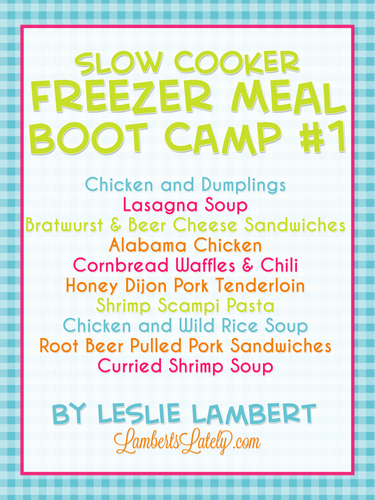 Slow Cooker Freezer Meal Boot Camp #1