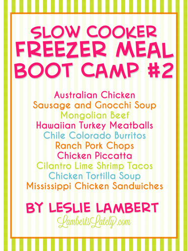 Slow Cooker Freezer Meal Boot Camp #2