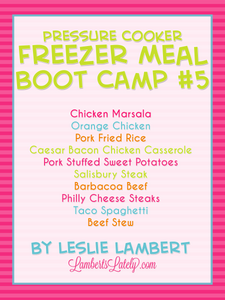 Pressure Cooker Freezer Meal Boot Camp #5
