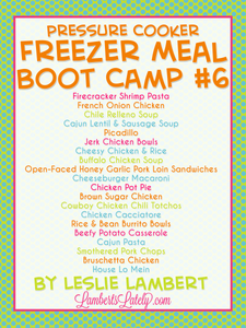 Pressure Cooker Freezer Meal Boot Camp #6