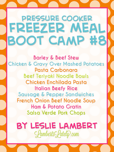 Pressure Cooker Freezer Meal Boot Camp #8
