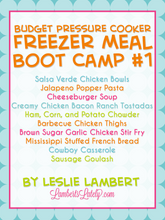 Load image into Gallery viewer, Budget Pressure Cooker Freezer Meal Boot Camp #1