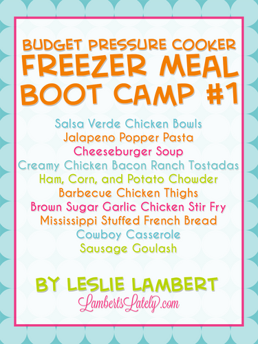 Budget Pressure Cooker Freezer Meal Boot Camp #1