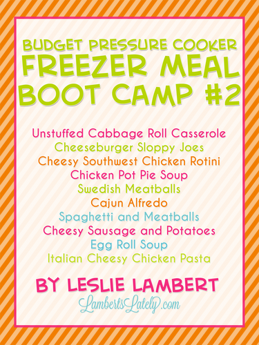 Budget Pressure Cooker Freezer Meal Boot Camp #2