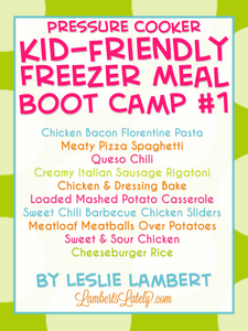 Kid-Friendly Pressure Cooker Freezer Meal Boot Camp #1