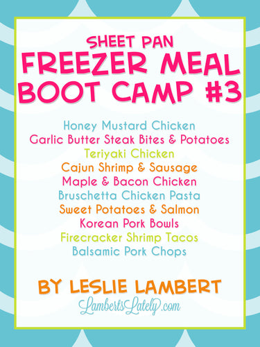 Sheet Pan Freezer Meal Boot Camp #3