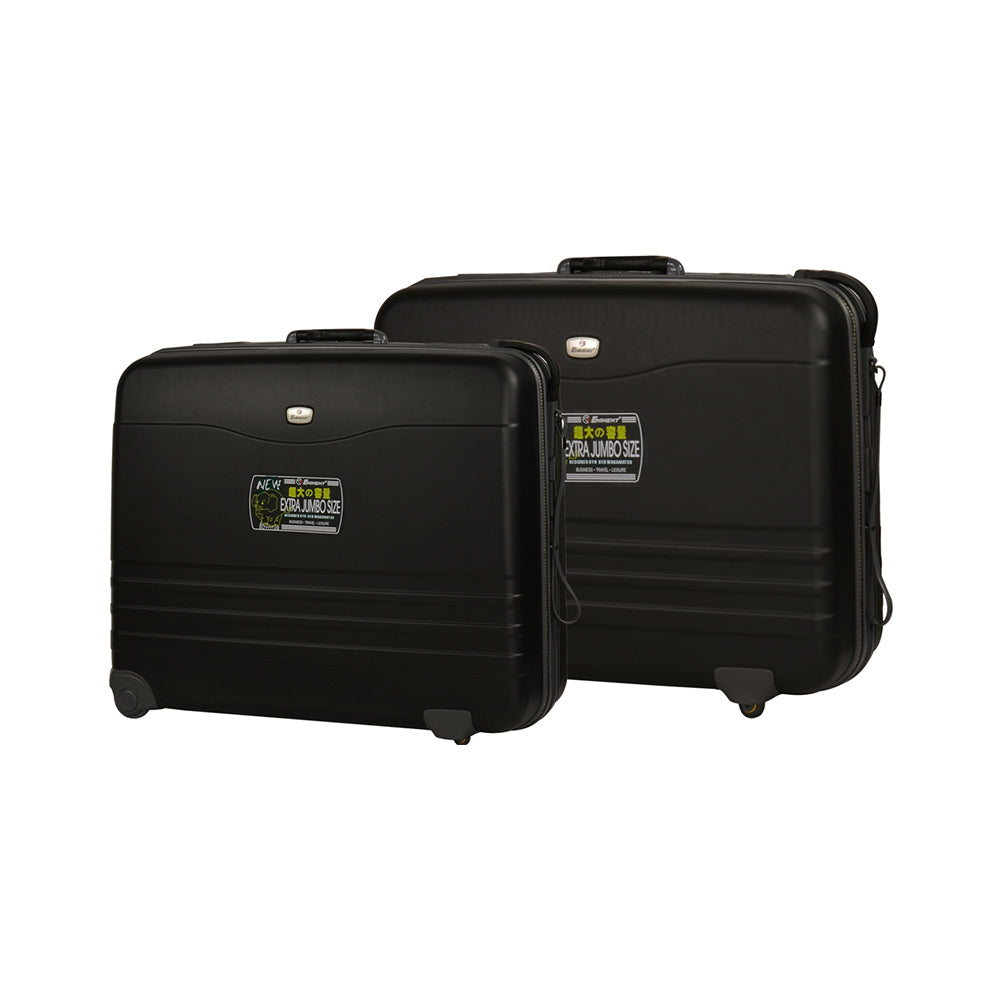 Eminent executive Suitcase set of 2 (E739AGP-2) - buyluggageonline