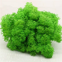 Load image into Gallery viewer, High quality DIY artificial green plant immortal fake flower Moss grass home living room decorative wall flower mini accessories