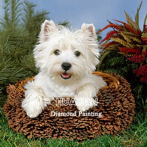 White Dog 5D Crystal Paintings Decorative DIY Home Decoration Select Round Square Inlay Diamonds Do It Yourself Art Project Relaxation Therapy
