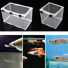 Load image into Gallery viewer, Fish Tank Aquarium Guppy Breeding Breeder Fish Baby Gauze Trap Box Isolator S/L