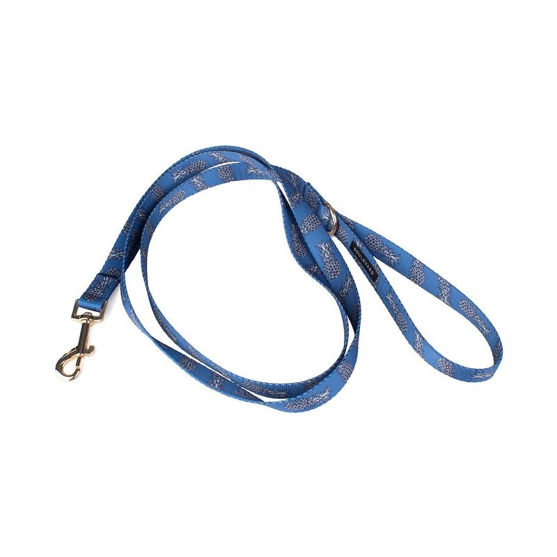 Sparky Dog Leash