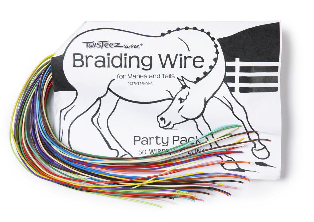 Braideez party pack