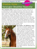 Review: Farm & Equine Mag, July 2013
