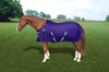 Kensington Platinum heavy-weight turnout rug