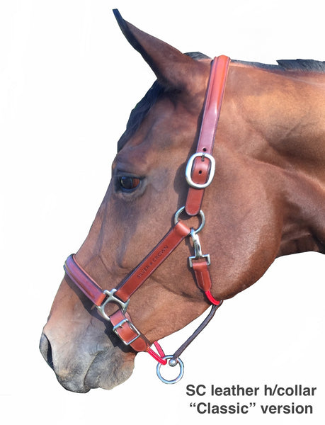 "SC leather headcollar ""Classic"" version"