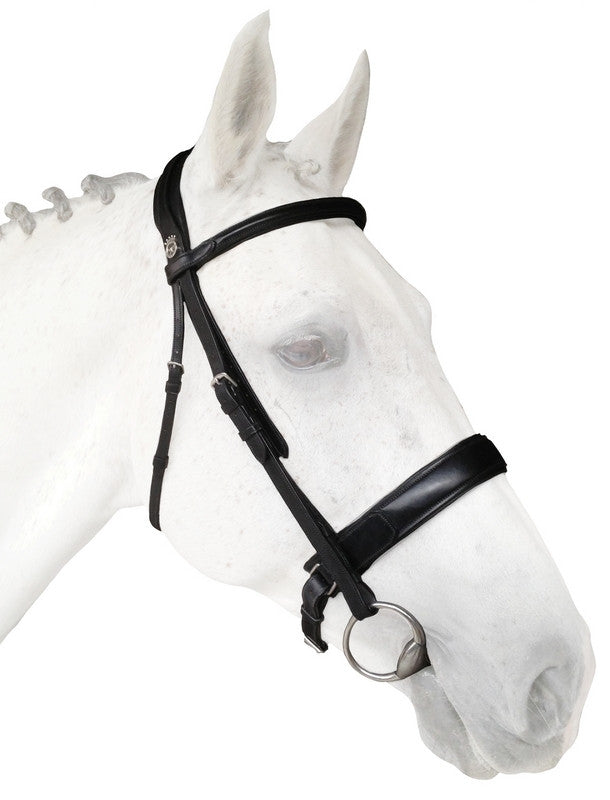 Silver Crown dressage bridle