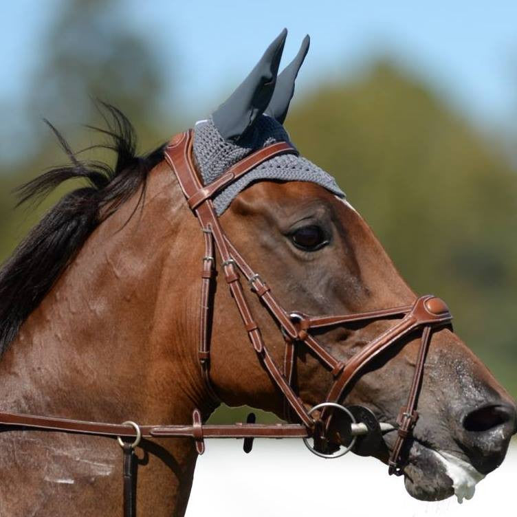 Silver Crown Spider Noseband Shadow Horse