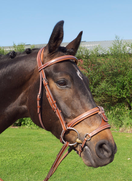 Silver Crown adjustable x-nose noseband in conker