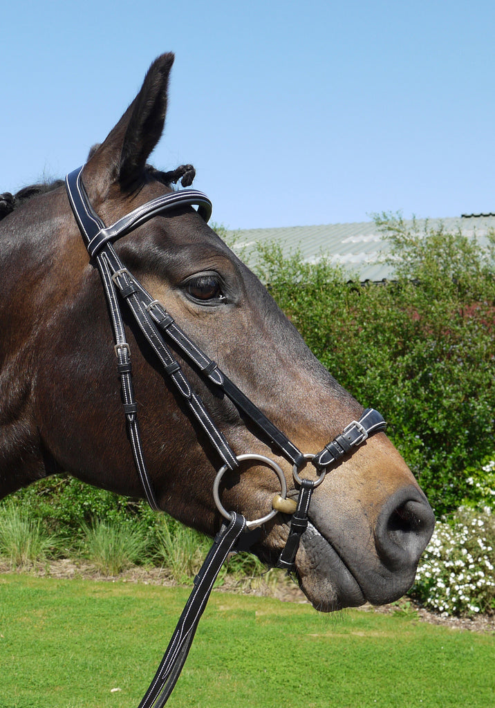 Silver Crown drop noseband