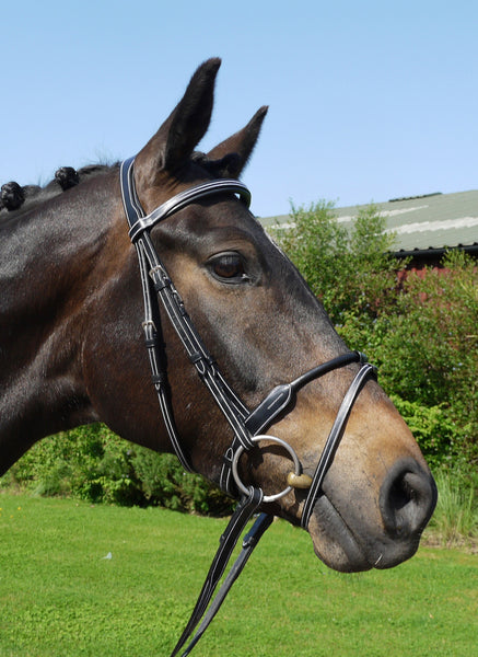 Silver Crown rolled flash noseband