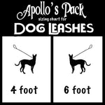 Teal Bone Leash ~ Apollo's Pack - the Pack that gives Back