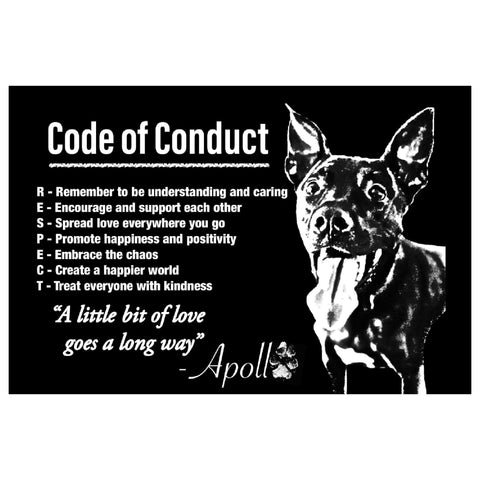 Respect: Code Of Conduct Magnet ~ Apollo's Pack - the Pack that gives Back