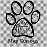 Stay Curious Campfire T-Shirt ~ Apollo's Pack - the Pack that gives Back