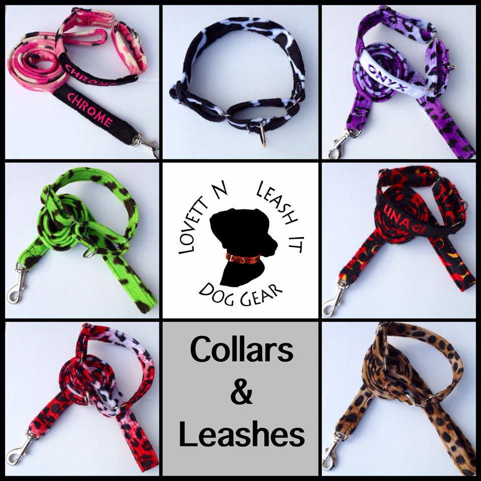 Matching Set Collar and Leash